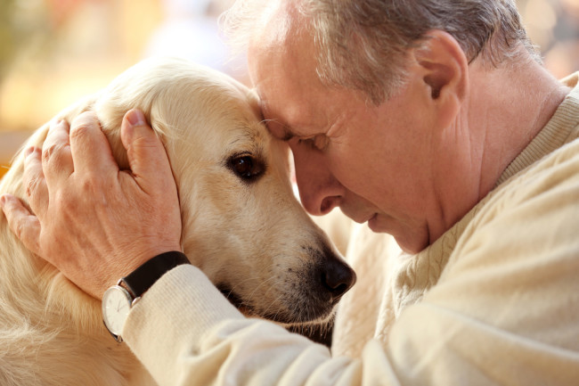 Benefits of dogs for retirement home!