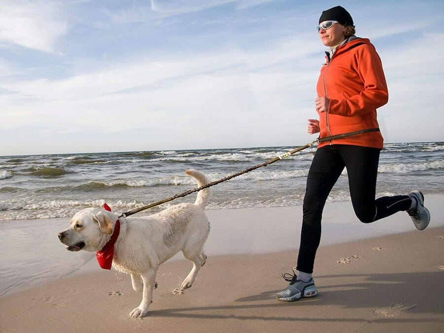 How To Run With Your Dog!